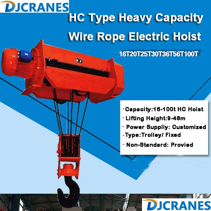 Double Outlet Rope Electric Hoist.jpg
